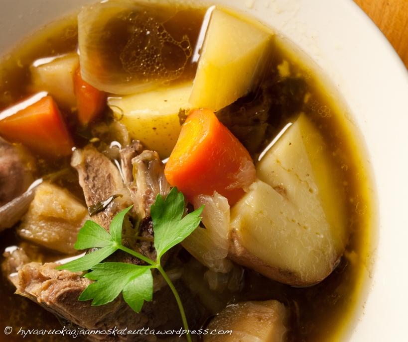 irish stew3